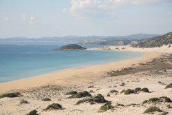 golden_beach_1711427102012_